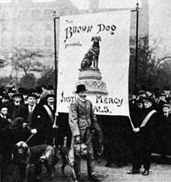 250px-The_Brown_Dog_in_Trafalgar_Square,_March_1910_(with_bloodhounds)