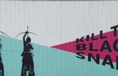 kill-the-black-snake